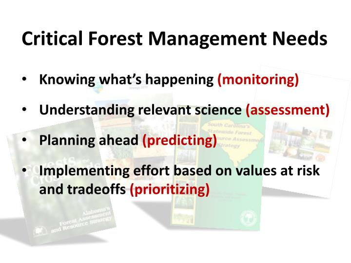 Critical Forest Management Needs