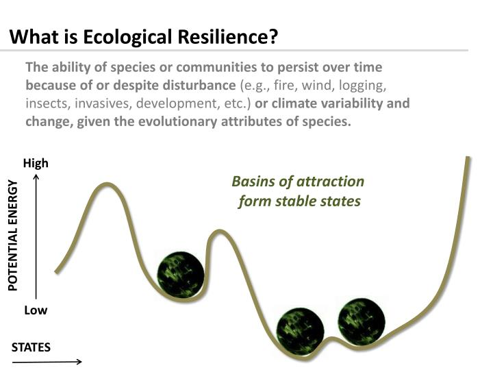 What is Ecological Resilience?