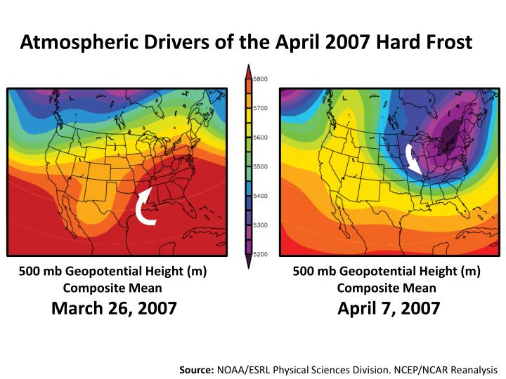 Atmospheric Drivers of the April 2007 Hard Frost