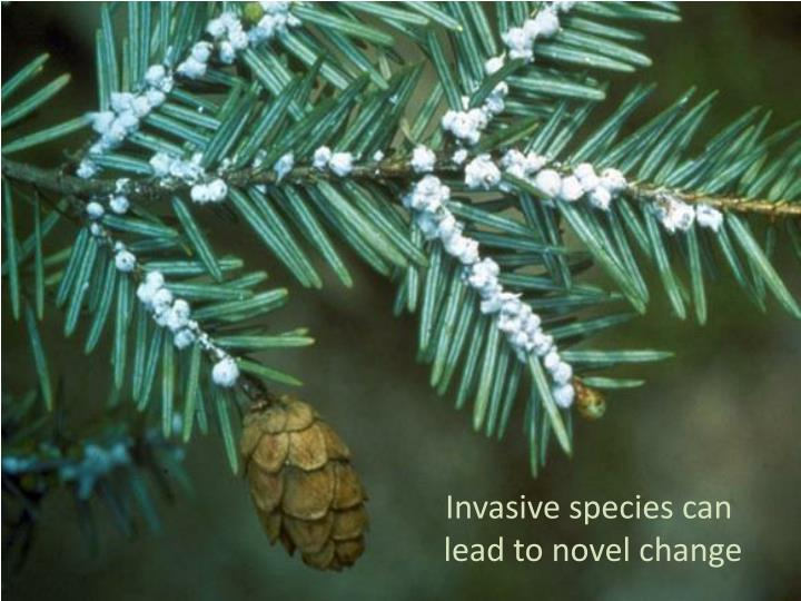 Invasive species can