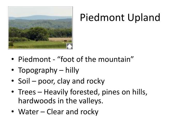Piedmont Upland