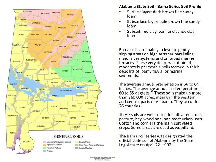 Alabama State Soil -