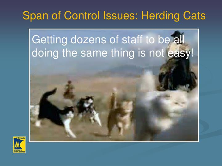 Span of Control Issues: Herding Cats