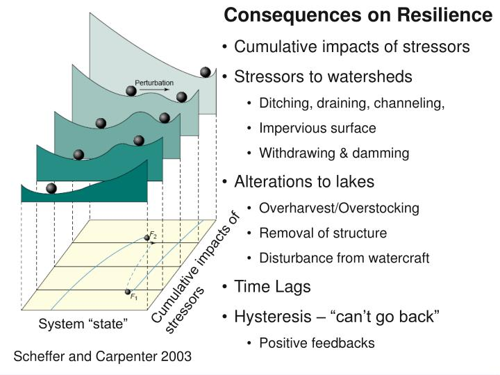Consequences on Resilience