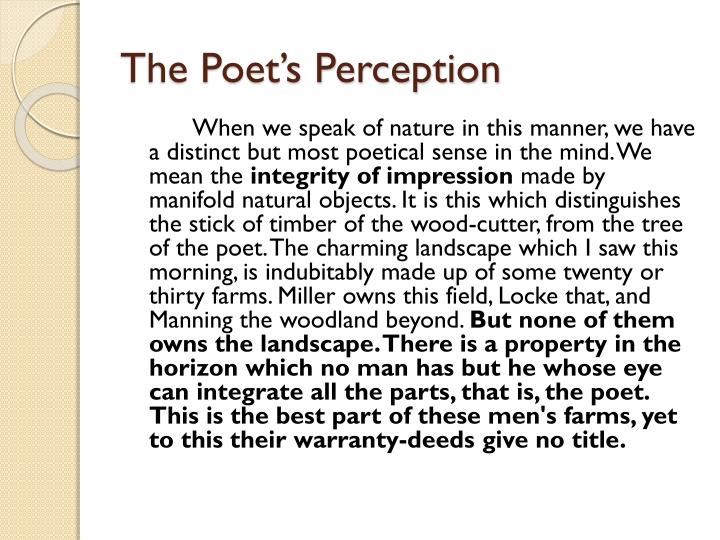 The Poet's Perception