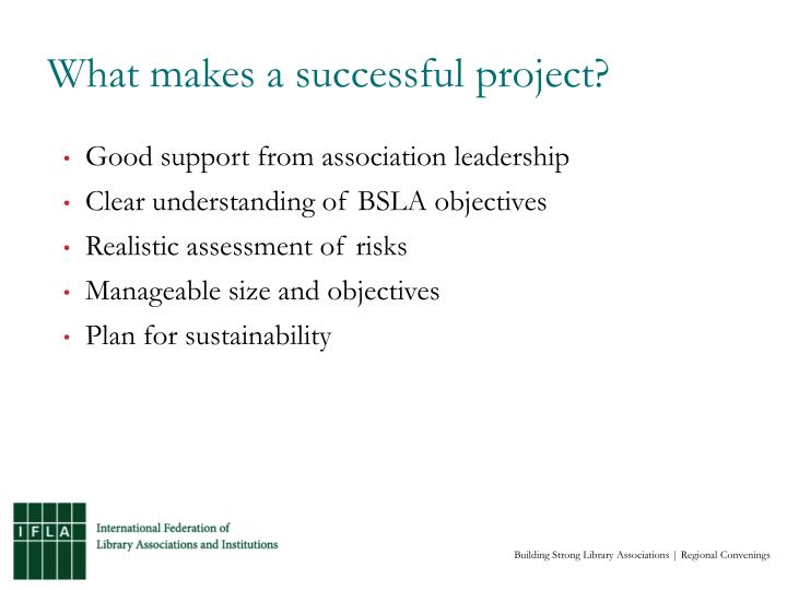 What makes a successful project?