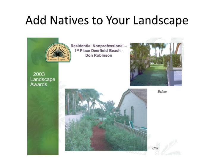 Add Natives to Your Landscape