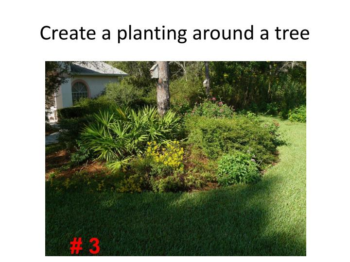 Create a planting around a tree