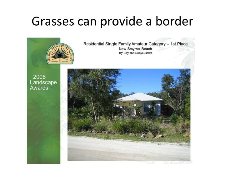 Grasses can provide a border