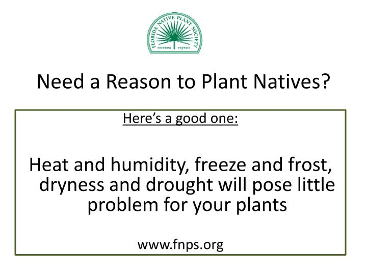 Need a reason to plant natives