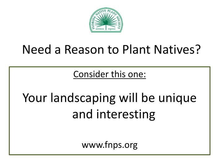 Need a Reason to Plant Natives?