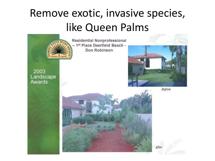 Remove exotic, invasive species,