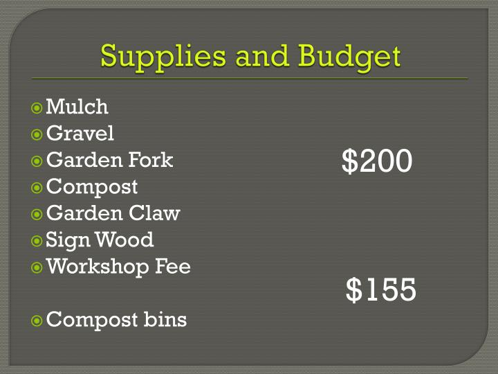 Supplies and Budget