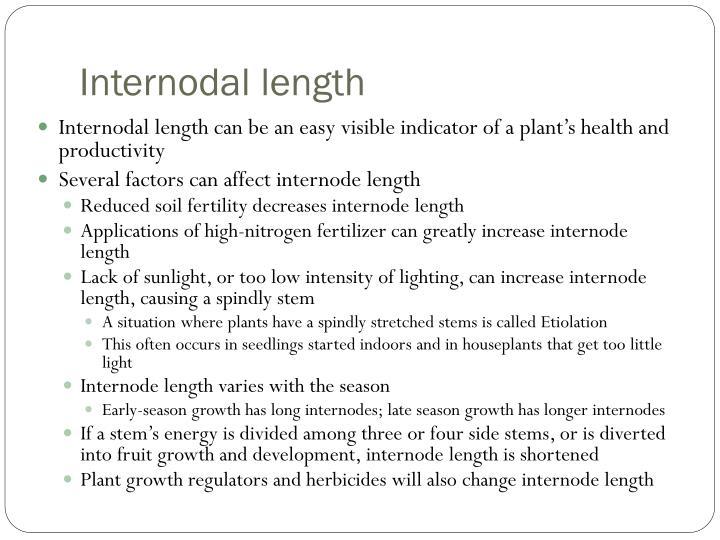 Internodal