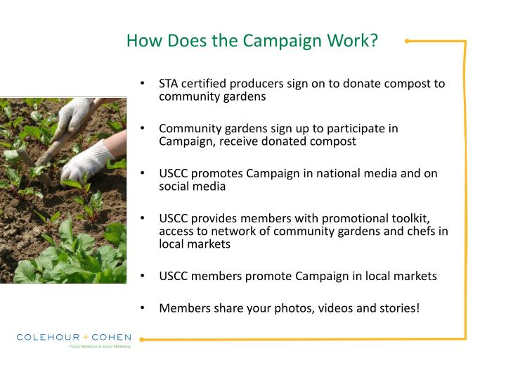 How Does the Campaign Work?