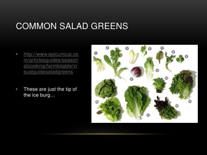 Common Salad Greens