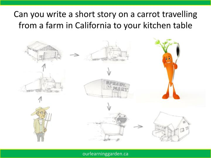 Can you write a short story on a carrot travelling from a farm in California to your kitchen table