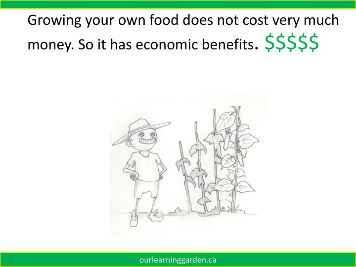 Growing your own food does not cost very much money. So it has economic benefits