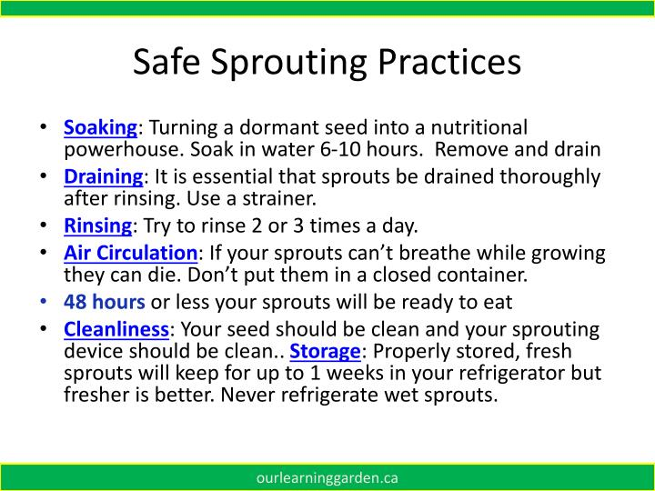 Safe Sprouting Practices