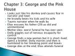 chapter 3 george and the pink house