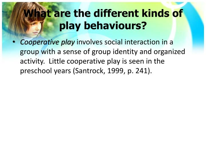 What are the different kinds of play behaviours?
