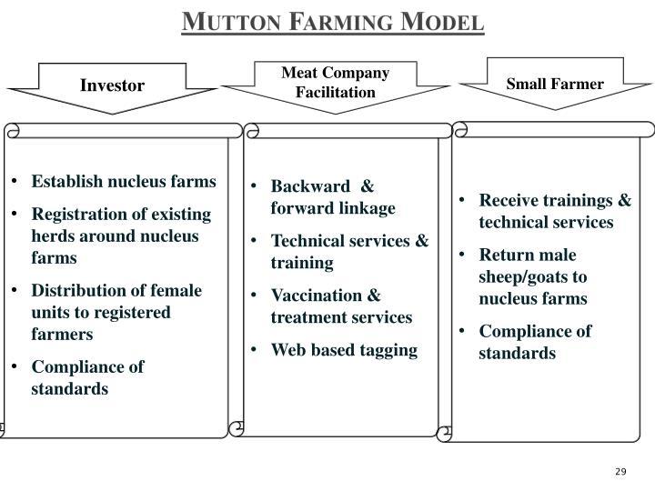 Mutton Farming Model
