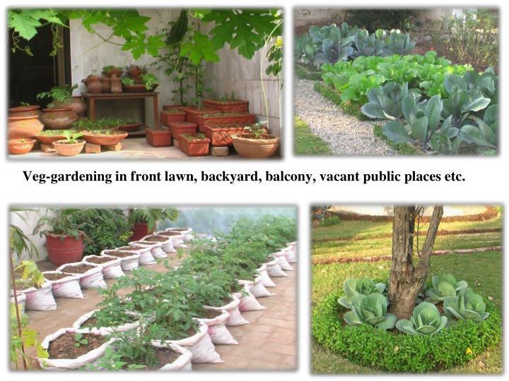 Veg-gardening