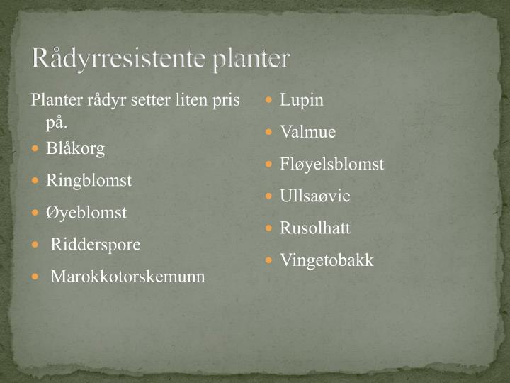 Rådyrresistente planter