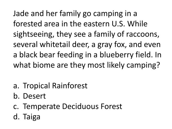 Jade and her family go camping in a forested