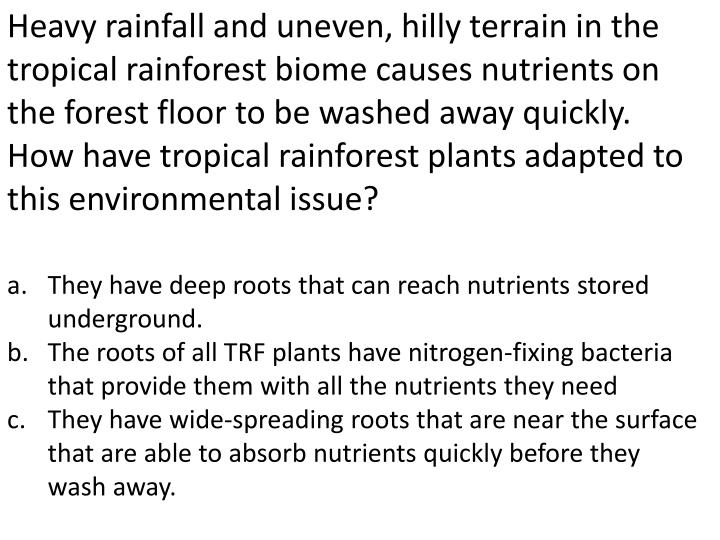 Heavy rainfall and uneven, hilly terrain in the tropical rainforest biome causes nutrients on the forest floor to be washed away quickly. How have tropical rainforest plants adapted to this environmental issue