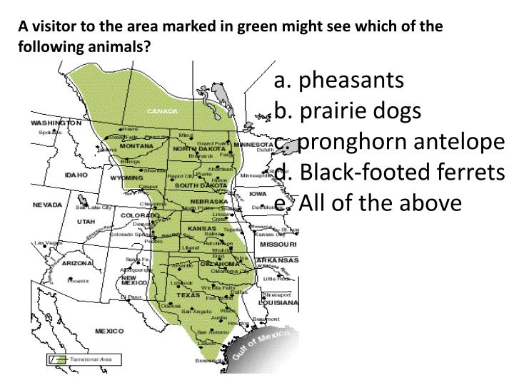 A visitor to the area marked in green might see which of the following animals?