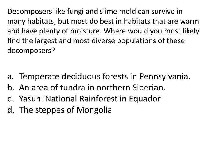 Decomposers like fungi and slime mold can survive in many habitats, but most do best in habitats that are warm and have plenty of moisture. Where would