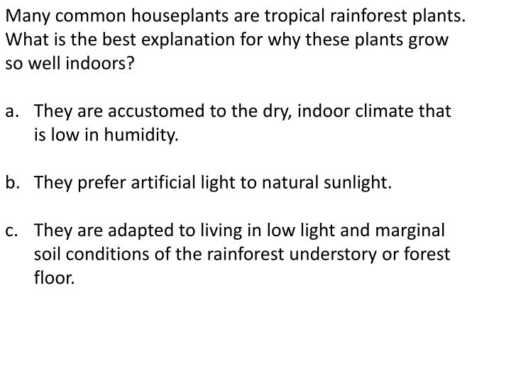 Many common houseplants are tropical rainforest plants. What is the best explanation for why these plants