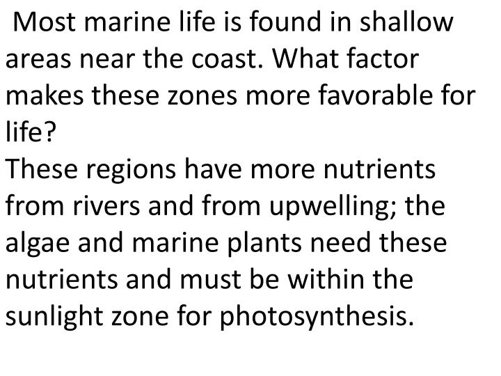Most marine life is found in shallow areas near the coast. What factor makes these zones more favorable for life