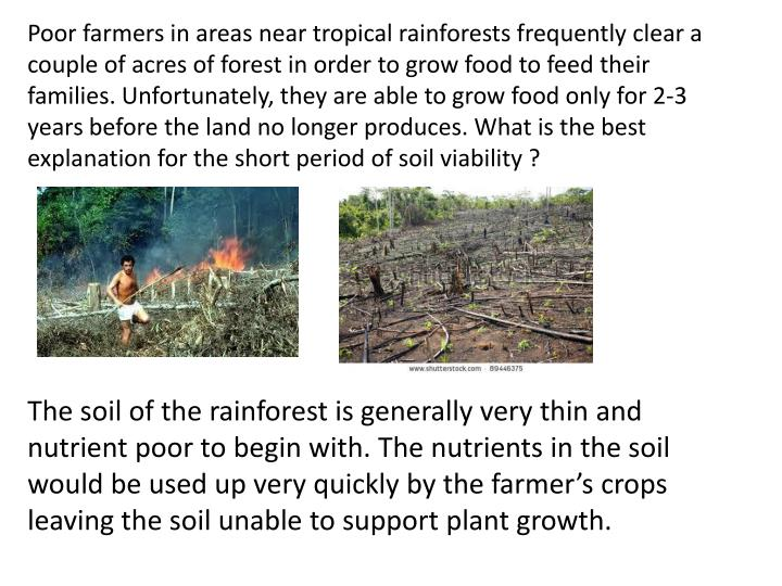 Poor farmers in areas near tropical rainforests frequently clear a couple of acres of forest in order to grow food to feed their families. Unfortunately, they are able to grow food only for 2-3 years before the land no longer produces. What is the best explanation for the short period of soil viability ?