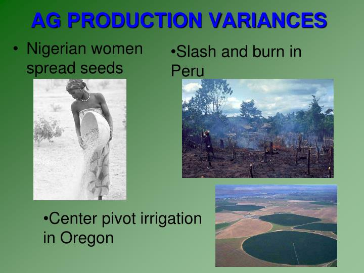 AG PRODUCTION VARIANCES