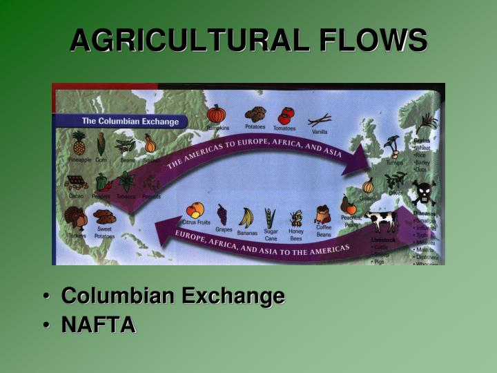 AGRICULTURAL FLOWS