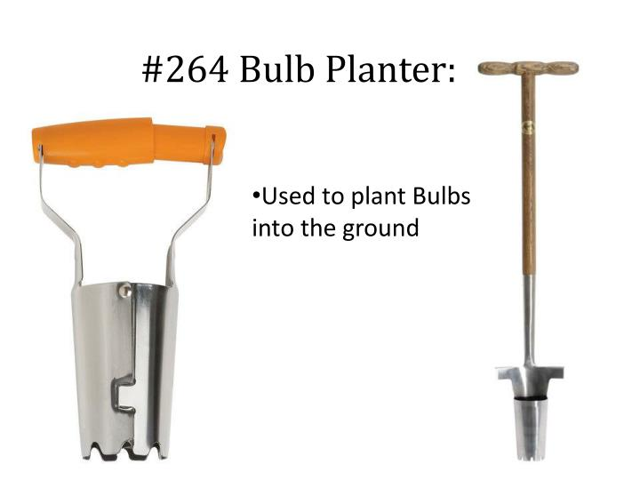 #264 Bulb Planter: