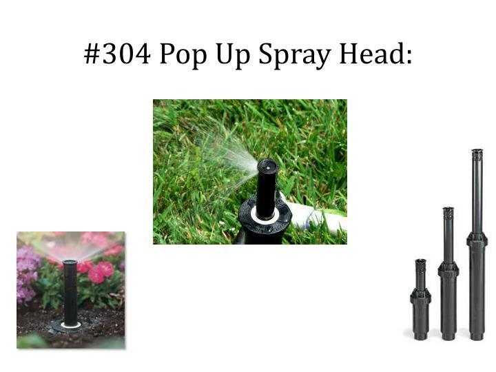 #304 Pop Up Spray Head:
