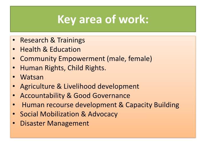 Key area of work: