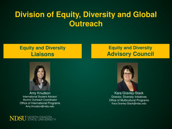 Division of Equity, Diversity and Global Outreach
