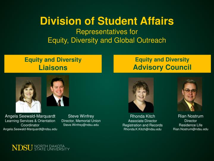 Division of student affairs representatives for equity diversity and global outreach