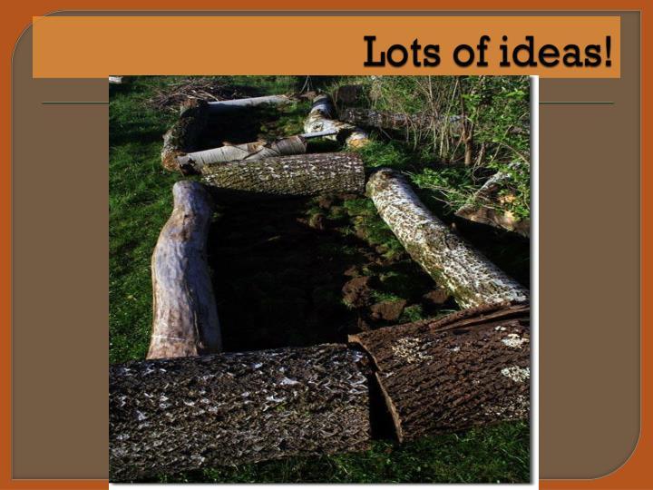 Lots of ideas!