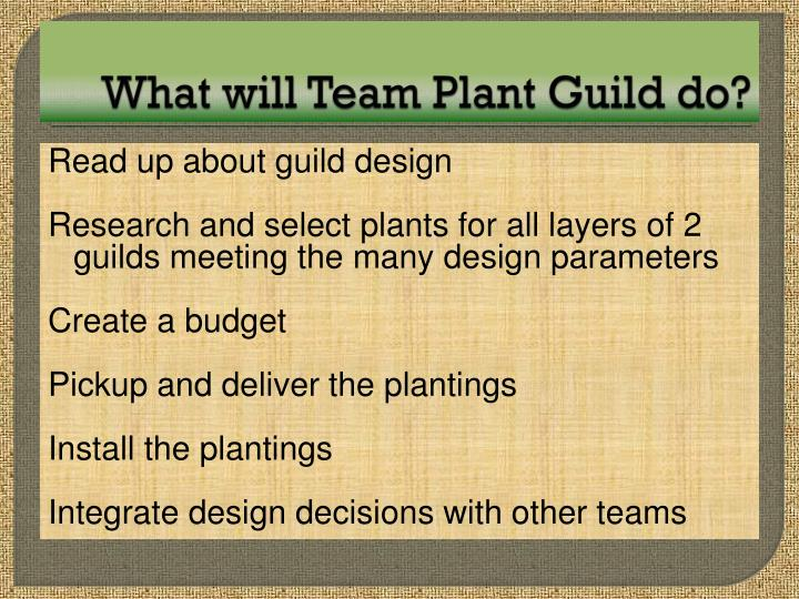 What will Team Plant Guild do?