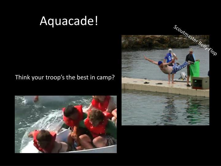 Aquacade!