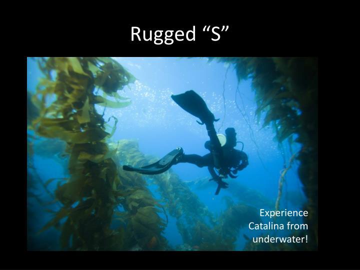 "Rugged ""S"""