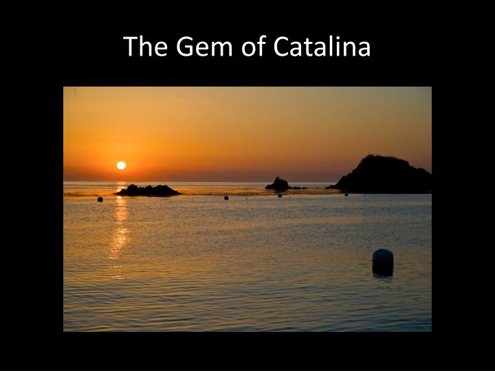 The gem of catalina