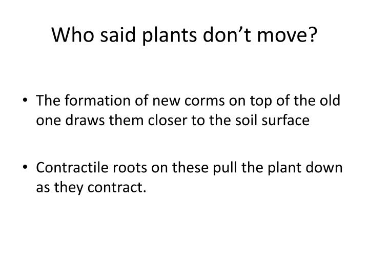 Who said plants don't move?