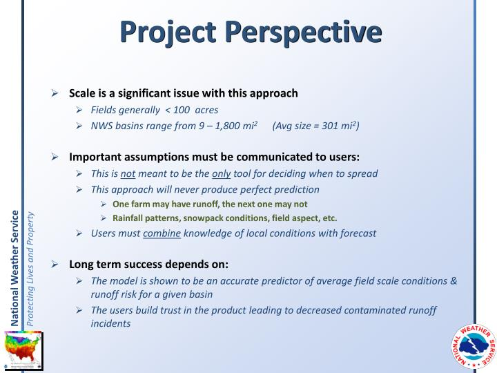 Project Perspective