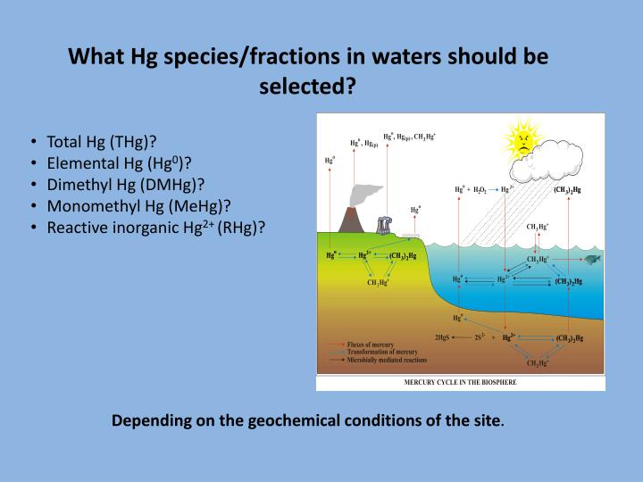 What Hg species/fractions in waters should be selected?
